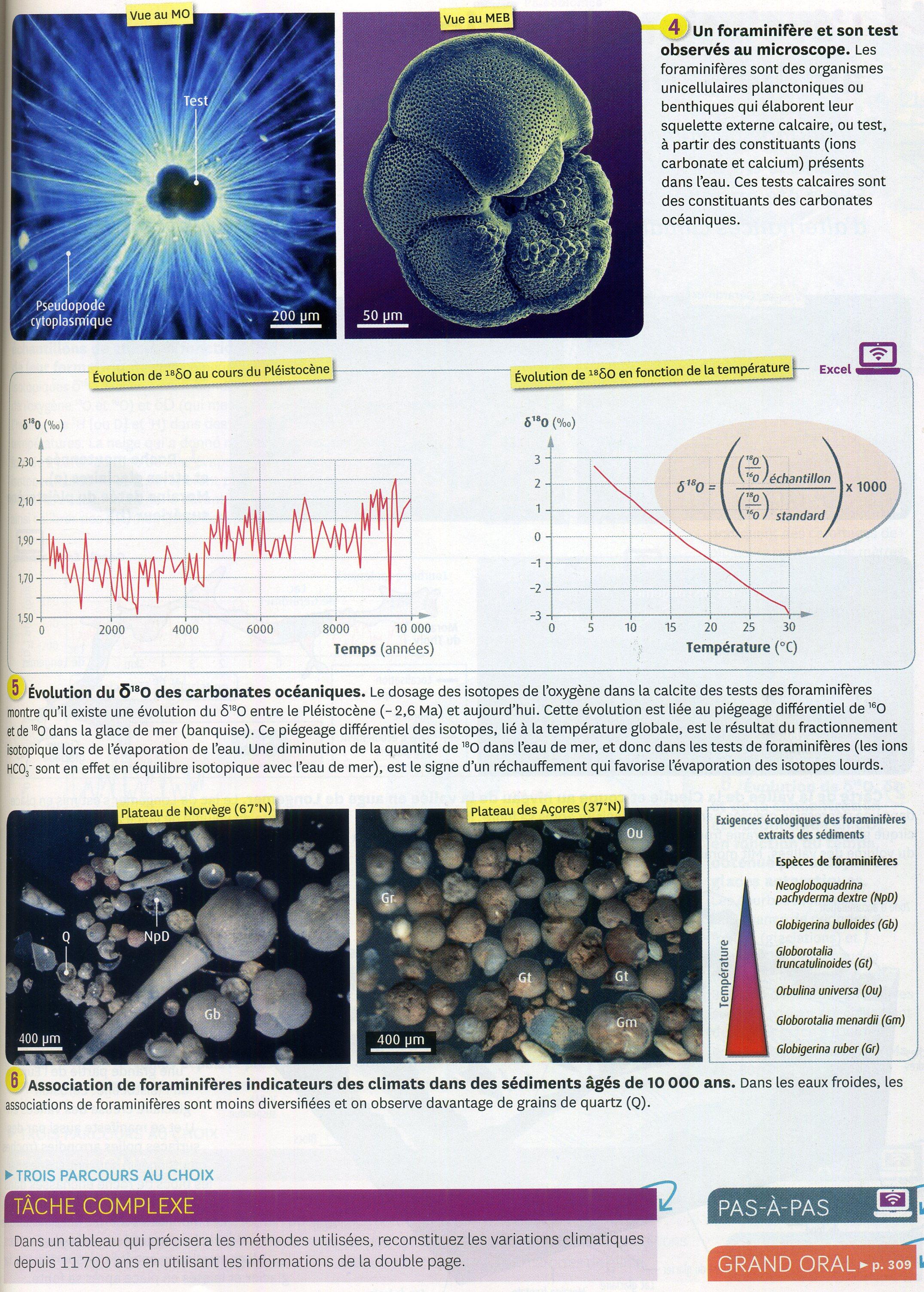 Activité 3 palynologie et sédiments (2).
