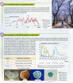 Climat et pollen