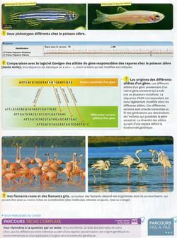 Act 10 Biodiversité et génétique (2)