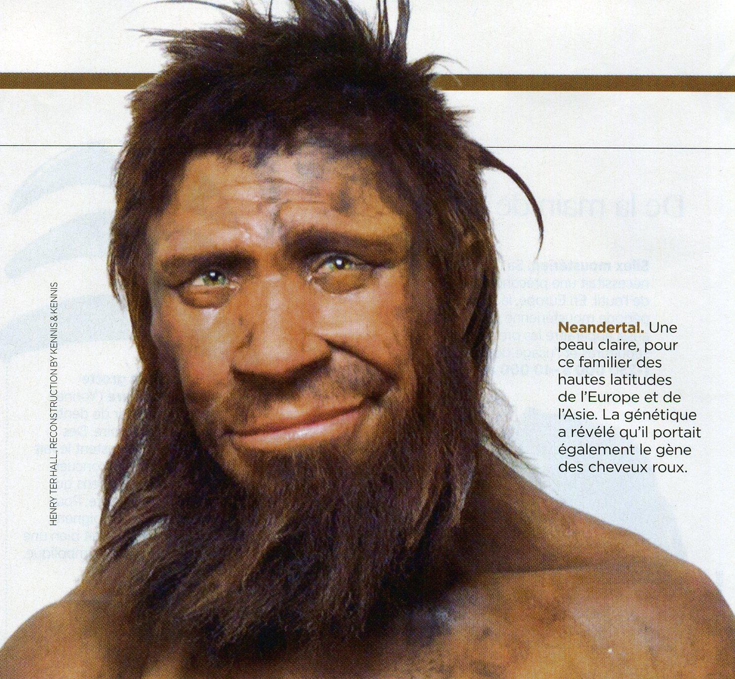 Néenderthal portrait