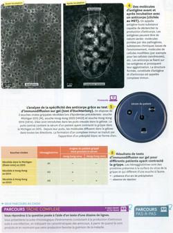 Activité 4 immunité humorale (2)