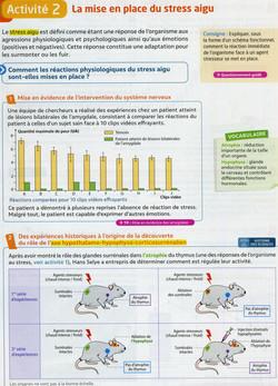 Activité 1 Réponse stress aigu (1)