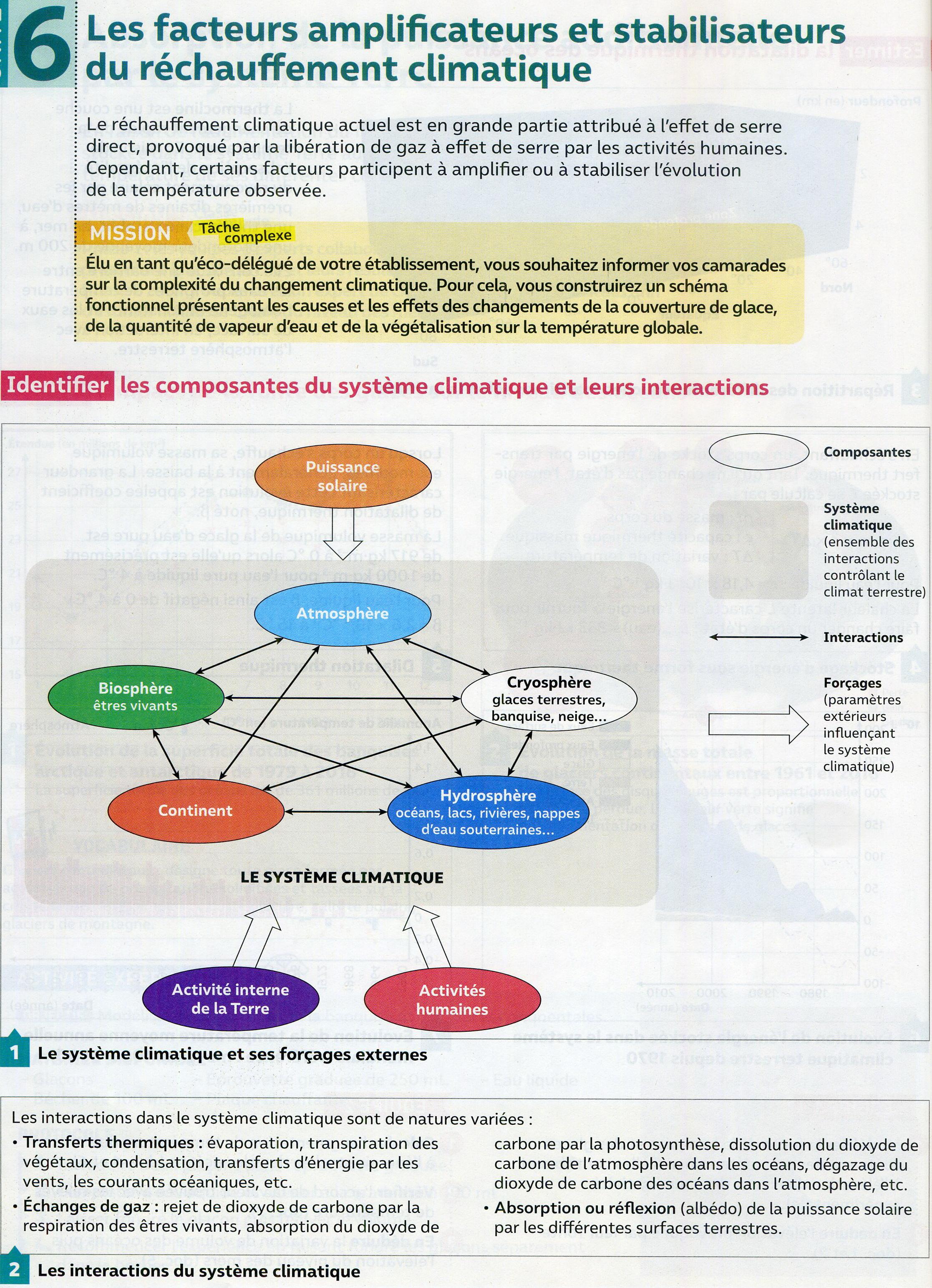 Activité effet amplificateur (1)