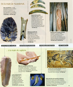 Néenderthal Homo sapiens outils