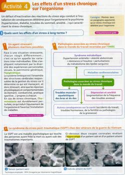 Activité 3 stress chronique (1)