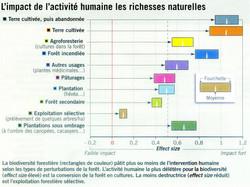 Biodiversité forestière impact humain
