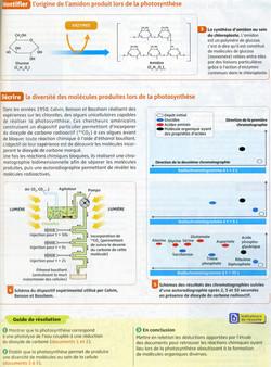 Activité 4 Matière organique (2)