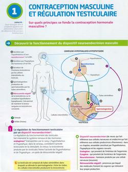 Activité 5 contraception masculine (1)