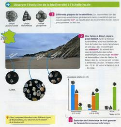 Act 13 Evolution de la biodiversité (1).