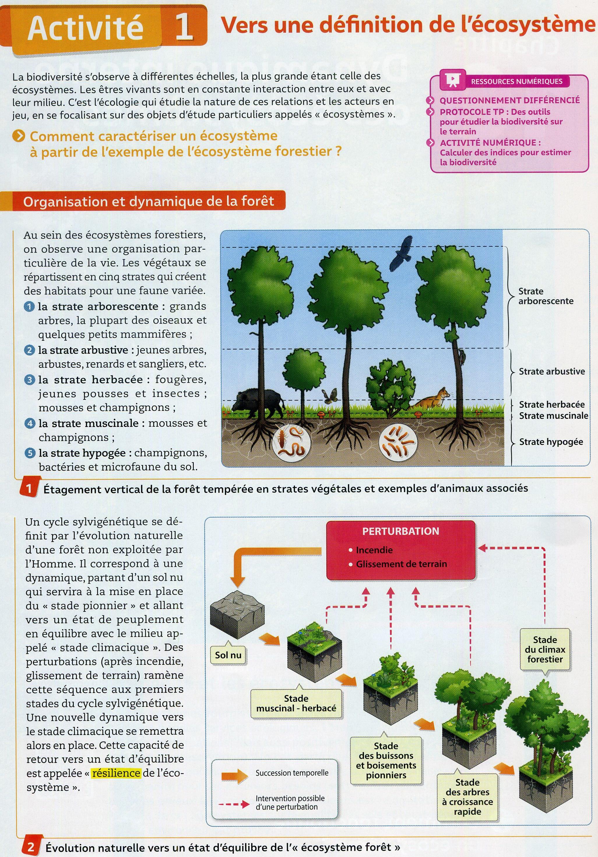Activité 1 définir un écosystème (1)