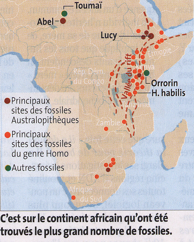 Berceau africain de l'humanité