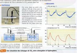 TP CO2 et température