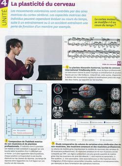 Activité 8 plasticité cérébrale (1)