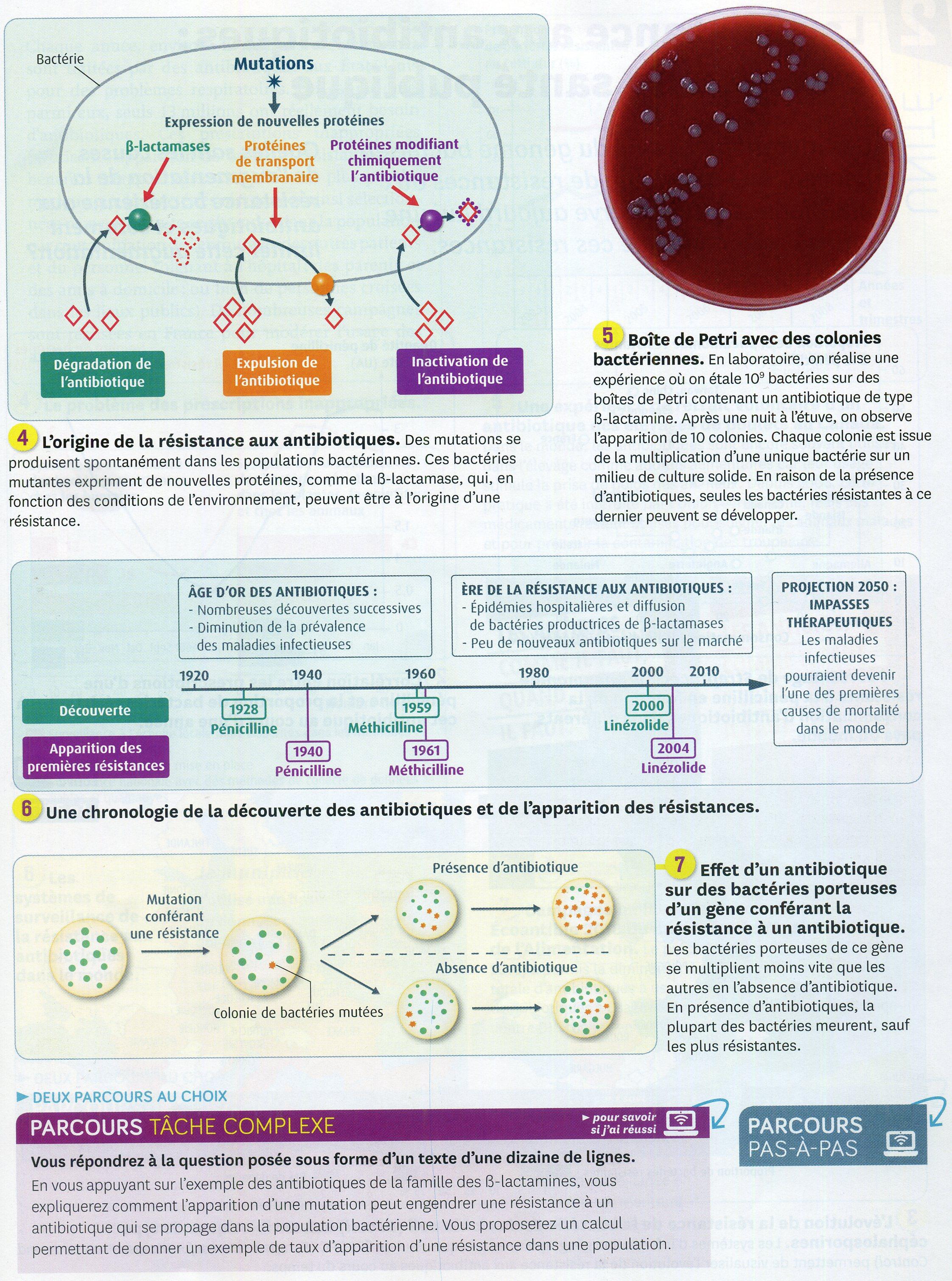 Antibiotique_résistance_(2)