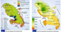 Biodiversité influence des pluies sur le