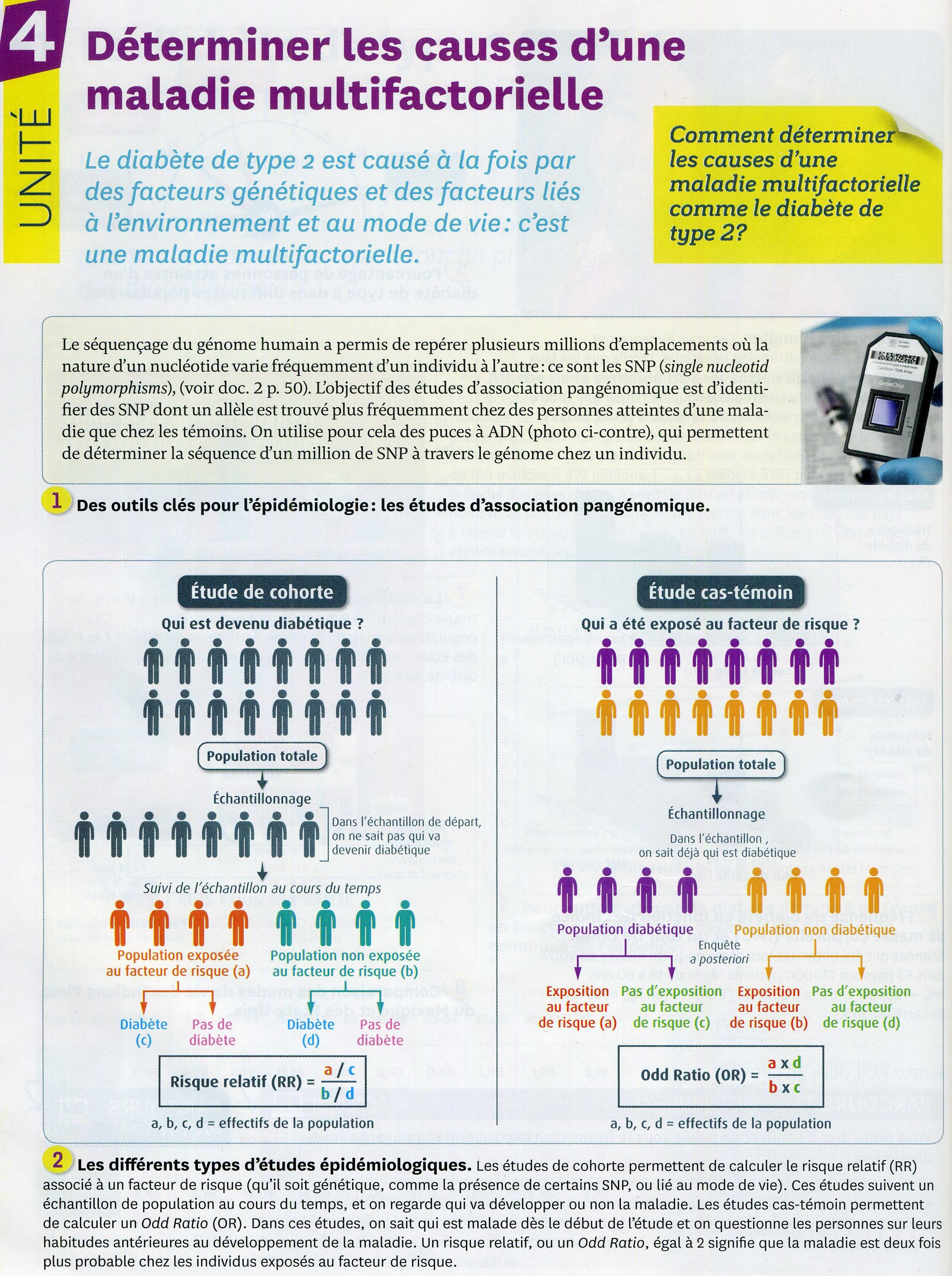 Diabète_de_type_2_les_causes_(1)