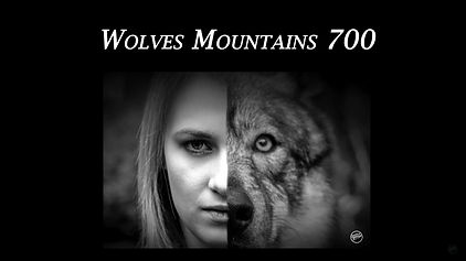 Wolves mountains 700.jpg