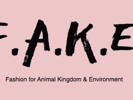 The F.A.K.E movement: Interview with Jonathan Ohayon