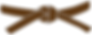 brown belt.png