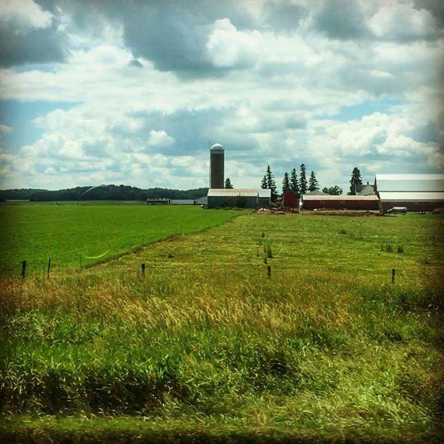 Farmland in Western Wisconsin