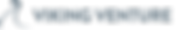 Viking bitmap stor.png