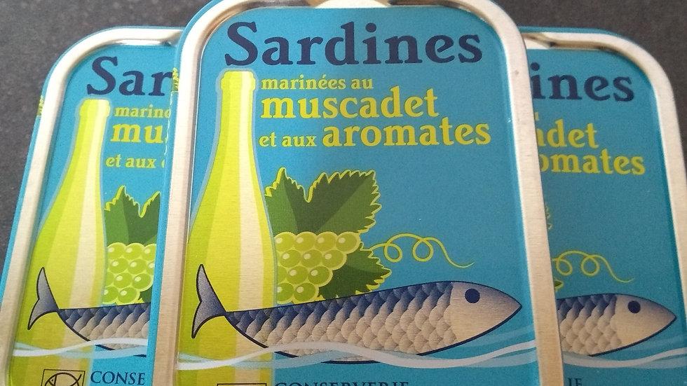 Sardines au muscadet et aux aromates