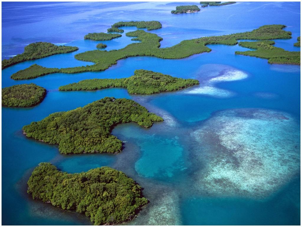 mangrove-islands