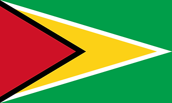 800px-Flag_of_Guyana.svg.png