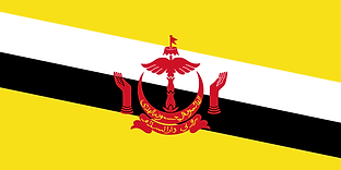 800px-Flag_of_Brunei.svg.png