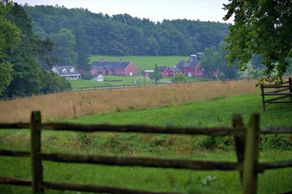 Farm 10.jpg