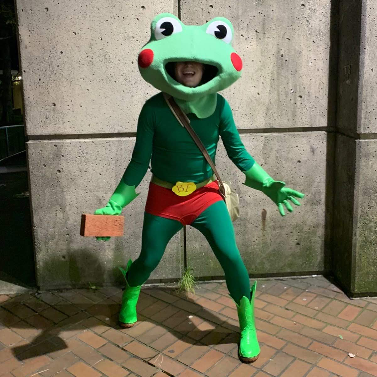 Brickfrog Costume