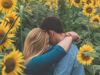 ท่ามกลางทุ่งดอกทานตะวัน ตัวแทนแห่งความรัก