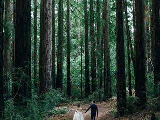 การเดินทางของความรัก (The Journey Of Love)
