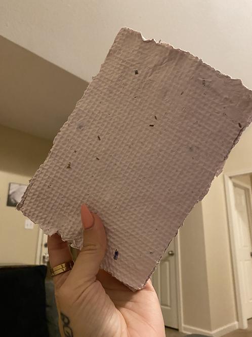 Handmade Planting Paper