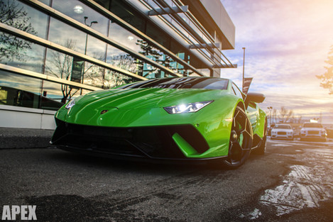 DISTINCTIVE COLLECTION PERFORMANTE