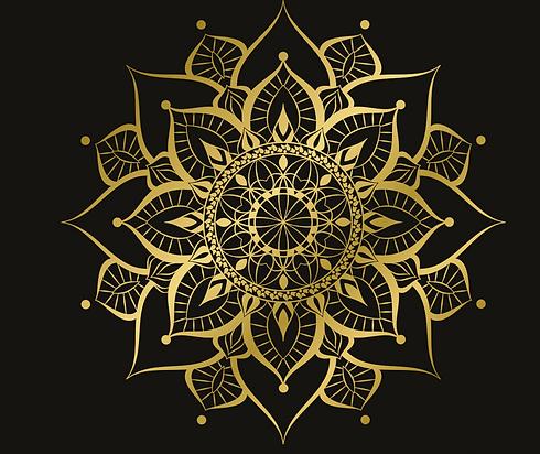 logo%252520transparent_edited_edited_edi