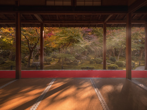 My best autumn leaf viewing spots in Kyoto :