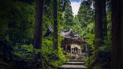 Tokyo Trip | Towada Jinja