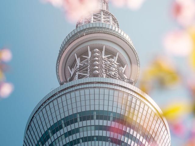 Skytree au printemps