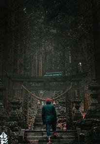 Nicolas Wauters organisateur voyages photos Japon