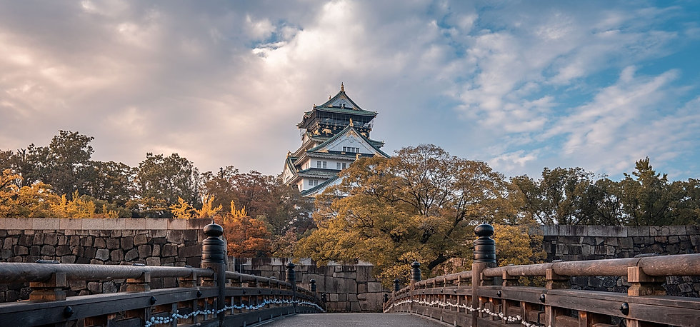 Tokyo Trip - Osaka  visite guidée