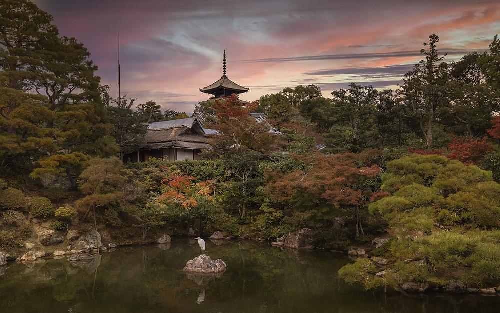Ninna-Ji temple kyoto