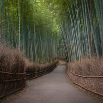 JAPAN IN SUMMER