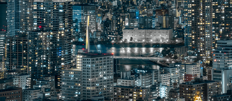 Tokyo night overview