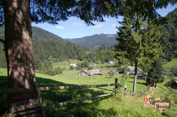 Beautiful village view from the wood