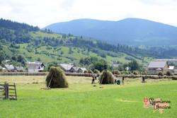 Ukrainian family making hay-imp