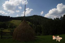 Hay stacks in Dzembronya