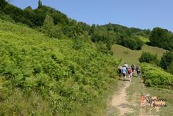 Group treking to Shepherds Place-imp