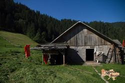 wooden house in Dzembronya