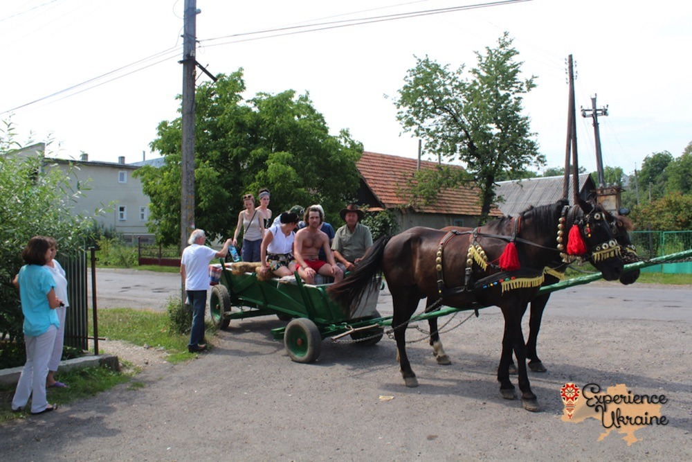 Horse and cart drive 2012